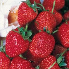strawberries..a good source of iodine for a healthy thyroid