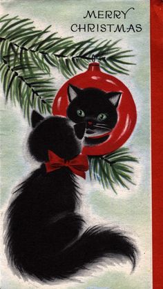 Vintage Christmas card : black cat reflected in Christmas ornament