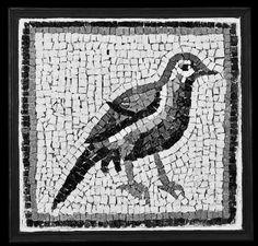 1/ The First Bird  40x40cm  #لوحات_فنيه #فسيفساء#لوحة#فن#حجر  #mosaic  #mosaique #mosaico #art #painting #marble #architecture #handcutmarble #sculpture #artist #beirut #beyrouth #baabda #lebanon #mosaicartpainting  by #joumanawehbe #el_dahr #wehbi #loveart #coffee #ancienttechniques #marbleart #جمانة_وهبه  ما زال العصفور ثابتاً في مكانه منذ سنوات. في الصباح، سأبدّل أمكنة الحجارة وأكسر هذا الصمت . سأرفع جناحيه قليلاً
