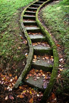 ...up the curved steps found in Enniskillen in Northern Ireland (by Sergio Formoso) . this would be so cute up the small hill to the dog run.