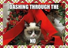 favorite grumpy cat joke. found this Via Mia F.   A fabulous joke indeed!