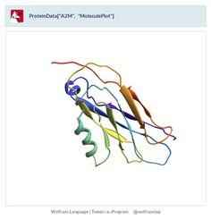 """ProteinData[""""A2M"""", """"MoleculePlot""""]"""