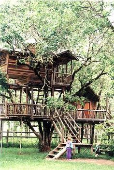 """Treehouse bed and breakfast for the """"Swiss Family Robinson"""" family vacation"""