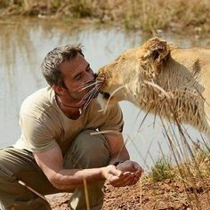 """Congratulations to """"Lion Whisperer"""" Kevin Richardson for winning The BrandLaureate International Personality Award. Born in Johannesburg, South Africa on October 8,1974, Richardson is a South African animal behaviorist who works extensively with native animals of Africa. A man with a lion-heart, who relies on intuition rather than static rules ..."""