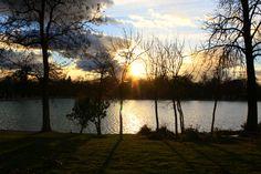 Estanque del Retiro #Madrid #Retiro #lago #atardecer