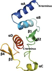 What do proteins of the #Ebola virus look like?