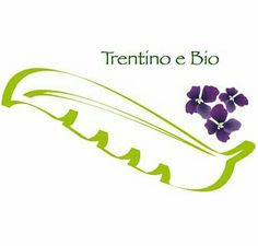 Trento in Trento, Trentino - Alto Adige