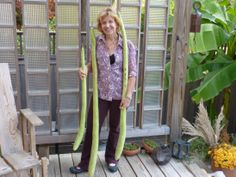 Smithsonian Gardens horticulturist Janet Draper poses with three of her very long Guinea Bean gourds grown in the Ripley Garden.