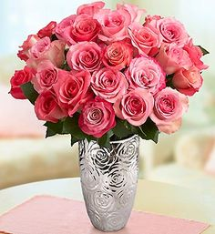 exotic pink roses