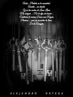 COLABORADORES      ALEJANDRO ORTEGA  La llave de tu Corazón   Ando... Perdido en la oscuridad  Amarte... me desvela  Y en las noches de Luna Llena Mi corazón ... No te deja de buscar .. Enséñame el camino  Dame una Razón  Perdona ...pero no encuentro la llave..  De tu Corazón  Alejandro Ortega