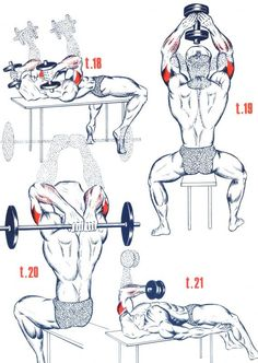 More Than 30 Differnt Triceps Exercice ! Fitness Workouts, Gym Workout Tips, Weight Training Workouts, Workout Challenge, At Home Workouts, Boxing Workout, Bodybuilding Training, Bodybuilding Motivation, Bodybuilding Workouts