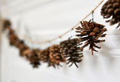 Pine cone bunting- spray painted or colour dipped only in matching colours