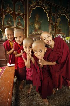 Young Buddhist Monks At Khampagar Monastery In Pradesch, India