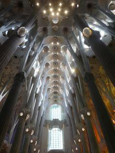 Ceiling, Sagrada Familia