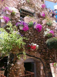 من  بيوت مدينة  يافا #فلسطين