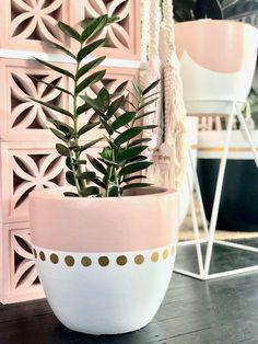 Terracotta or Lightweight Egg potOur Massive range of Handpainted pots have been designed by us . Painted Plant Pots, Painted Flower Pots, Paint Garden Pots, Painted Pebbles, Flower Pot Art, Flower Pot Design, House Plants Decor, Plant Decor, Diy Home Crafts