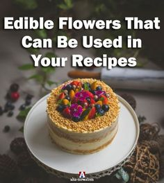 Do you know you can eat some types of flowers? Yes, here are some edible flowers that you can add to your food recipes or use for food decoration. And they bring health benefits with them as well! More on the blog :) #AhaNOW #edible #flowers #edibleflowers #food #recipes #decoration #guestpost #guestposting #guestpostservices #blog #blogging #bloggers #foodblog #foodbloggers #flavor #recipe #dish Food Decoration, Edible Flowers, Family Recipes, Good Mood, Forks, Health Benefits, Keep It Cleaner, Everything, Drinking