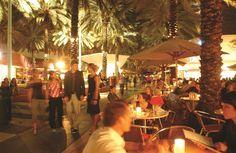 Miami Miami, Activities
