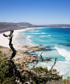 Noordhoek Beach, Cape Town, South Africa ❤ I love Cape Town sooo much! Places To Travel, Places To Visit, Oh The Places You'll Go, South Afrika, Le Cap, Cape Town South Africa, Shore Excursions, Travel Magazines, Cruise Travel