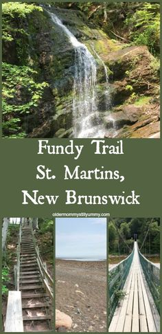 Day Tripping on the Fundy Trail, N., Canada - Older Mommy Still Yummy ~ We recently visited the breathtaking Fundy Trail which is located in southern New Brunswick, Canada and is part of the Trans Canada Trail system. Best Vacation Destinations, Best Vacation Spots, Best Vacations, Vacation Places, Vacation Ideas, Travel With Kids, Family Travel, Travel And Leisure, Travel Tips