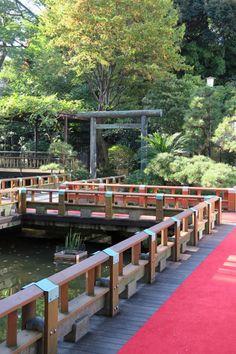 a bridge to the shrine ,Harajuku