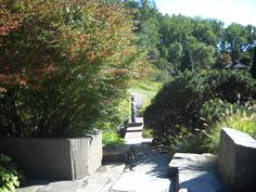 Photograph taken by Stacy Anmarie Mighty.. Brookside Garden 2009, Silver Spring, Maryland