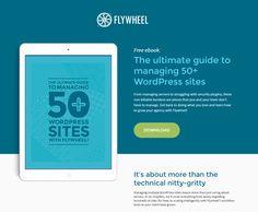 Flywheel Landing Page Example