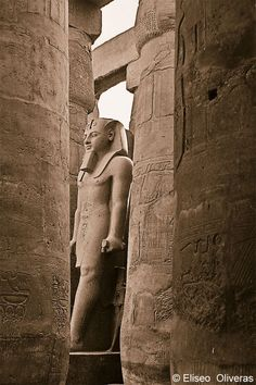 El faraón solitario  Luxor   Egipto