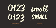 Sanelma - Webfont & Desktop font « MyFonts