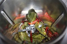 www.zaubermone.de: grünes Thaicurry