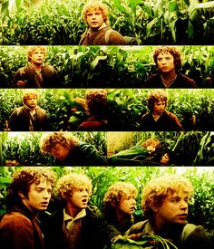 The Lord of the Rings: The Fellowship of the Ring--2001