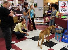 You can never go wrong with a cute dog as the University Bookstore at Texas State University held an event benefiting the local Paws Shelter!