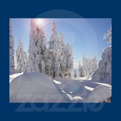 Winterscape in BC, Canada Canvas Print