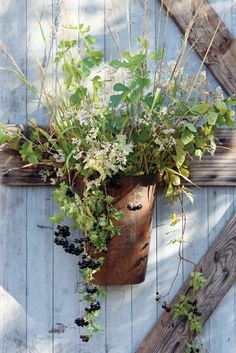 THE perfect bucket to display your collected flowers and greens for every season. Use in place of a traditional wreath on the front door.  ITEM LL7000  RUSTIC METAL DOOR BUCKET  $20  {SHOWN FILLED; COMES EMPTY.  11 X 7 X 16}
