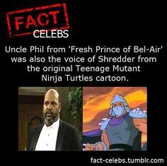 Nerd Fact