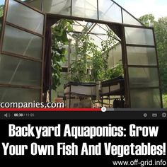 Growing plants in coconut husk, rock wool, or gravel with added nutrients but without soil (i.e., hydroponics) primarily equates to three things: first, the water stays in the [...]