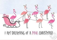 Santa's sleigh pulled by pink flamingos