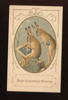 Bunny Rabbits & Chalk Board Cute Antique Embossed Easter Postcard-kkk895