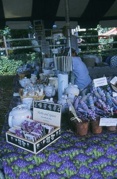 Pennsylvania Lavender Festival at Willow Pond Farm, Fairfield PA