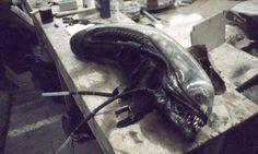 Alien - Imgur