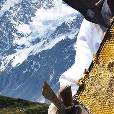 Delicious Mount Everest, Honey, Mountains, Nature, Travel, Naturaleza, Viajes, Traveling, Natural