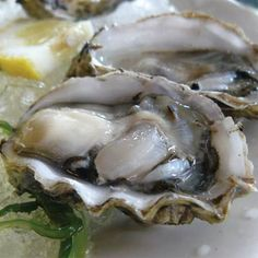 Craving OYSTERS on the HALF-SHELL? We've got 'em (Virginia Atlantic, Shucked to Order) for just .75 each! While you're here, you may also want to pick up LIVE SOFT-SHELL CRABS (3 sizes – Whales, Jumbos & Prime) that we'll clean for you. Plus, savor healthy ORGANIC SCOTTISH SALMON (Farm-raised, Atlantic) for a low 14.98 lb. Thru Wed. (All our Seafood is SUSTAINABLY SOURCED, of course.)