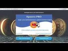 385000 и 570$  за 21 день результаты Cripto pro