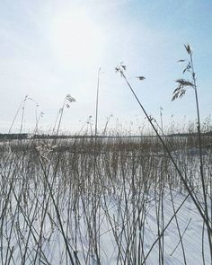 Täydellinen päivä hiihtoreissulle!!  Jos oot Porvoossa suosittelen ehdottomasti hiihto tai kävely retkeä jäätynyttä Porvoonjokea pitkin! #goodvibesonly #skiing . . . . . . . #porvoo #porvoonjoki #skitrip #visitporvoo #finland #finnishwinter #scandinavianwinter #scandinavia #visitfinland #winter #snowseason #snowsports #wintersports #hiihto #hiihtoretki #vscocam #fashionstatement #goodlife