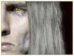 The Witcher by AnnaSulikowska on DeviantArt