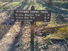 Porters Creek Trail, which is located in the less traveled Greenbrier section of the National Park, is an incredible 4-mile hiking trail. The trail meanders along beautiful Porters Creak and offers spring hikers unmatched views of a forest floor covered with trilliums, violets, wild geraniums, and many other species of wildflowers.