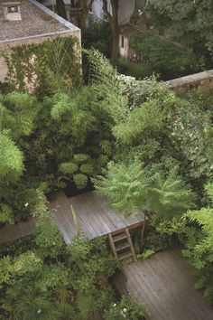 Jardin et terrasse : zen, design, en bois - House With A Garden Back Gardens, Small Gardens, Outdoor Gardens, Urban Garden Design, Zen Design, Wood Design, House Design, Jungle Gardens, Rooftop Garden