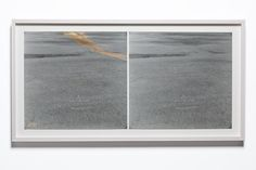2 Identical Gelatin Prints, 1 stained, 2013