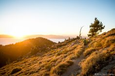 Quick Facts - Tahoe 200 Endurance Run Ultra Trail Races, Travel Ideas, Country Roads, Facts, Running, Truths