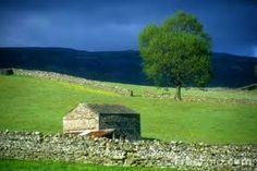 beautiful irish landscape - Google Search